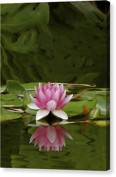 Double Lily Canvas Print