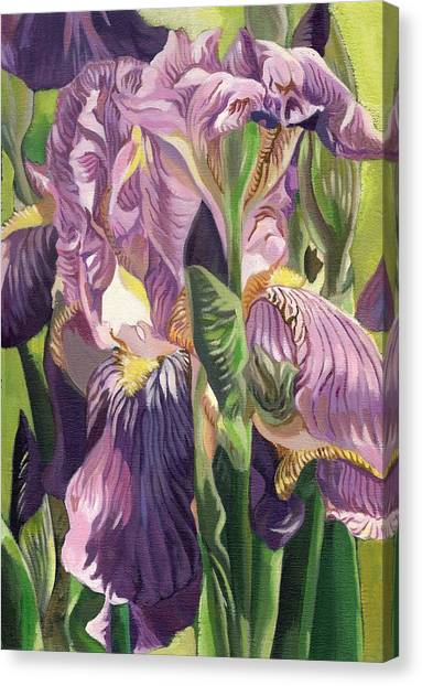 Double Purple Irises -painting Canvas Print