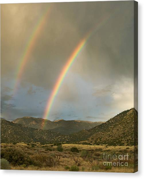 Rain Canvas Print - Double Rainbow In Desert by Matt Tilghman