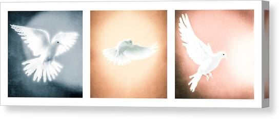 Dove In Flight Triptych Canvas Print