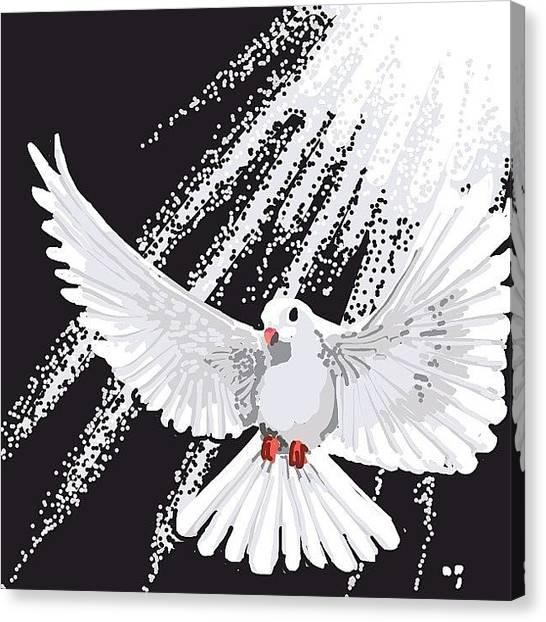 Dove Canvas Print - #doves #dove #dovesds #bird #peace by David Burles