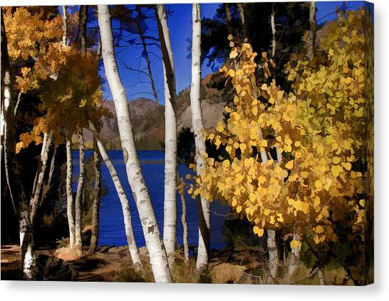 June Lake Canvas Print - Down By The Lake by Donna Kennedy