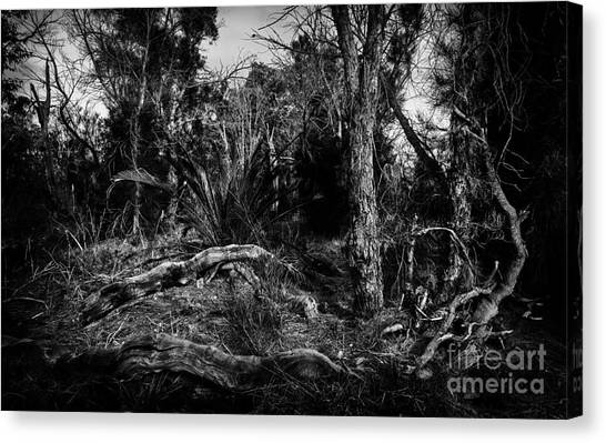 Fallen Tree Canvas Print - Down In The Woods by Julian Cook