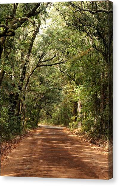 Down The Road A Piece  Canvas Print by Kim Thompson