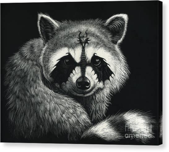 Raccoons Canvas Print - Draccoon by Stanley Morrison