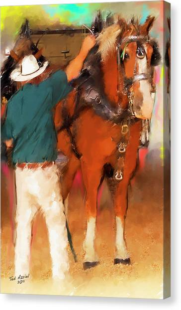 Draft Horse And Trainer Canvas Print