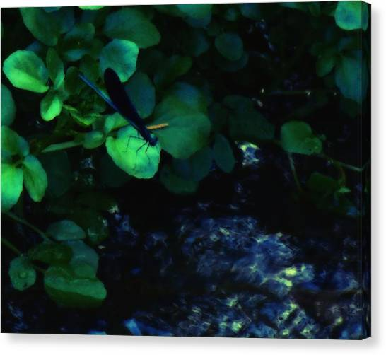 Dragonfly Daze Canvas Print