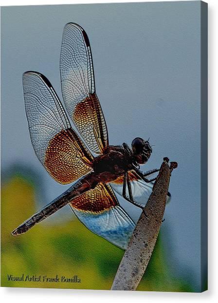 Dragonfly Sky Print Canvas Print