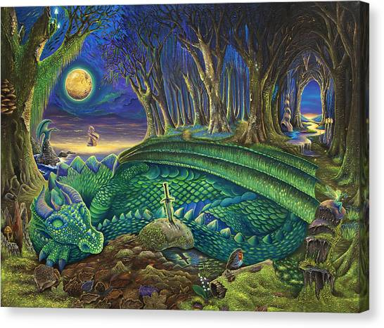 Mossy Forest Canvas Print - Dragon's Slumber  by Dan Woollard