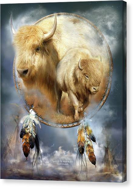 Catchers Canvas Print - Dream Catcher - Spirit Of The White Buffalo by Carol Cavalaris