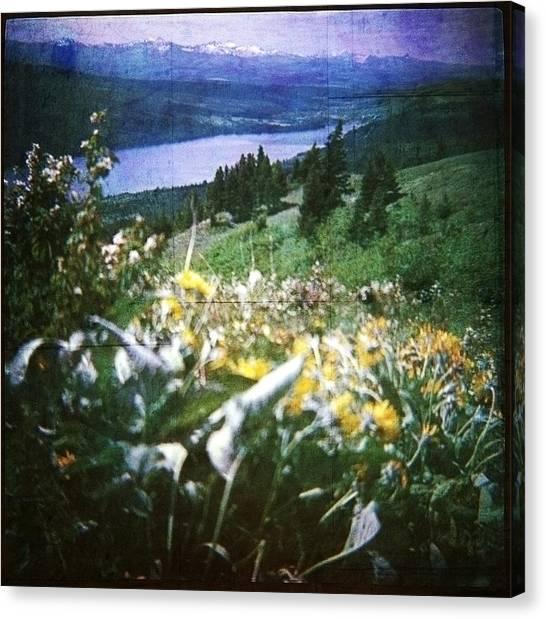 Dream In East Glacier Canvas Print