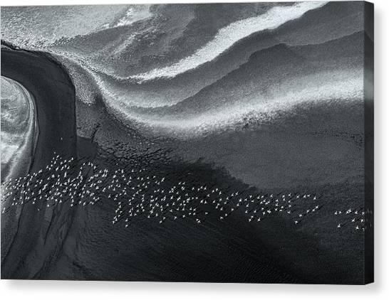Kenyan Canvas Print - Dream Land by John Fan
