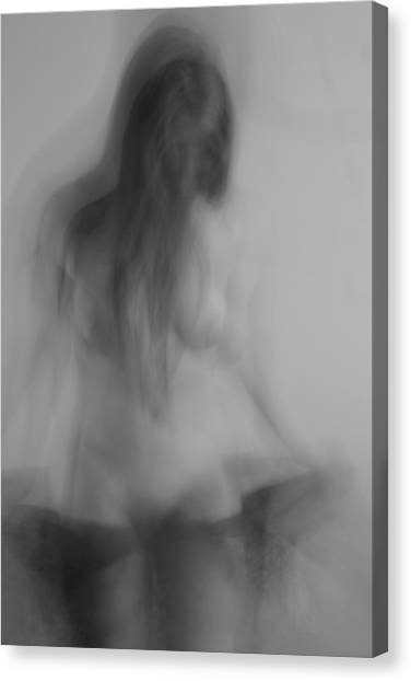 Dream Series 1 Canvas Print