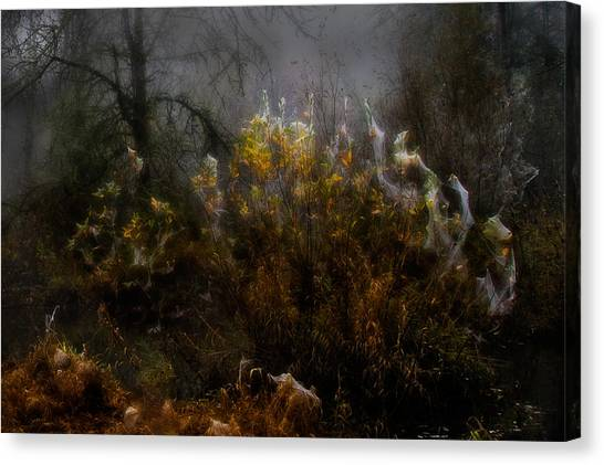 Dream Weavers Canvas Print