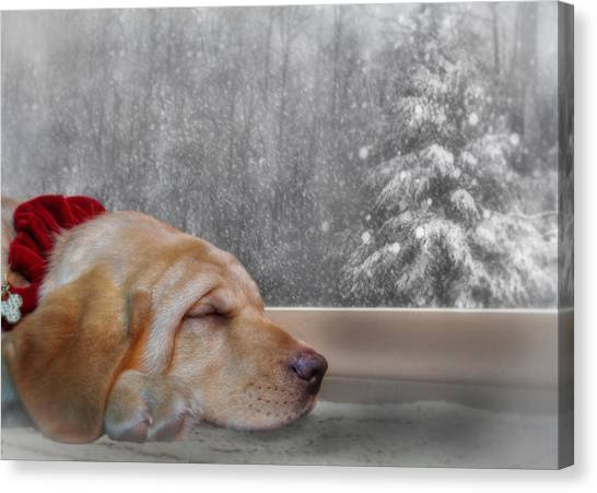 Yellow Lab Canvas Print - Dreamin' Of A White Christmas 2 by Lori Deiter