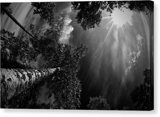 Sweden Canvas Print - Dreaming Before The Thunder by Mikael Jigmo
