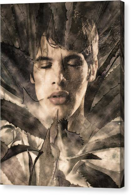 Dreaming - 2/10 Canvas Print