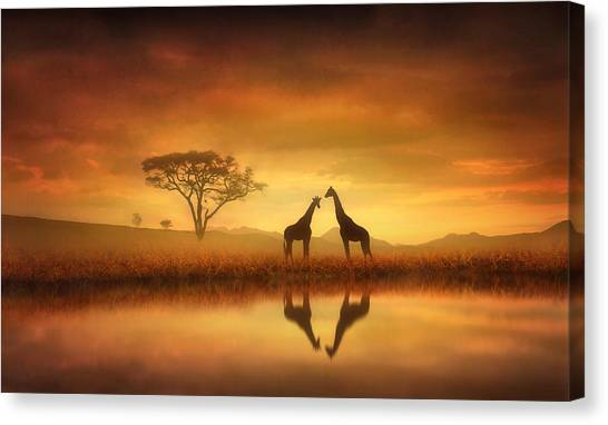 Giraffes Canvas Print - Dreaming Of Africa by Jennifer Woodward