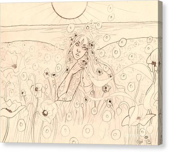 Poppy Dreams Sketch Canvas Print by Coriander  Shea