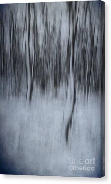 Dreamland #1 Canvas Print