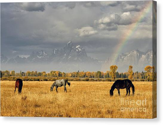 Dreams At The End Of The Rainbow Canvas Print by Deby Dixon