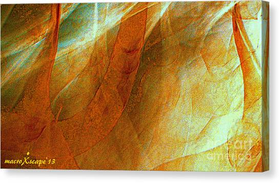 Dreamscape Canvas Print by JCYoung MacroXscape