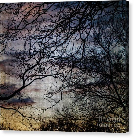 Dreamy 2 Canvas Print