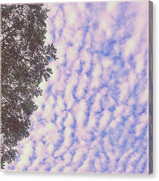 Ashes Canvas Print - #dreamy #skies. .. #newtown by Alexandra Cook