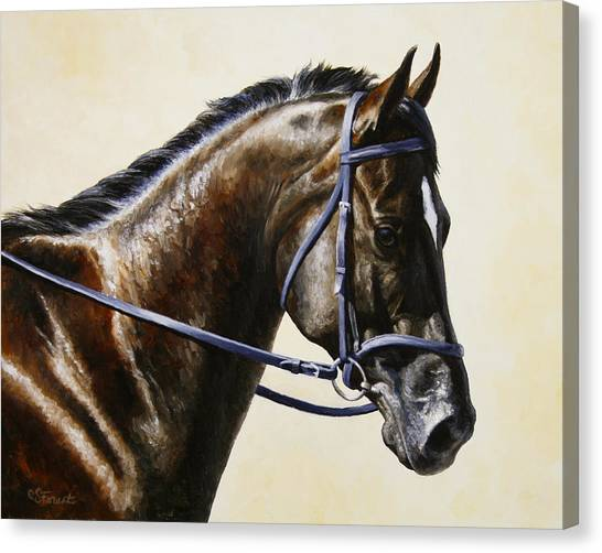 Horse Tack Canvas Print - Dressage Horse - Concentration by Crista Forest