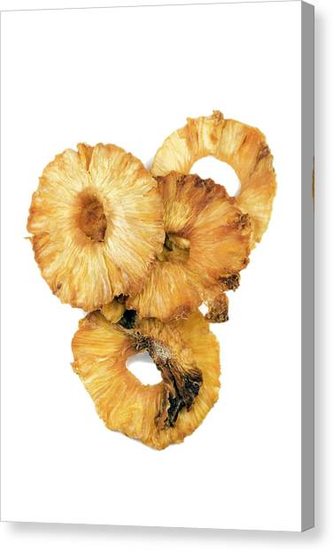Knockout Canvas Print - Dried Pineapple Rings by Geoff Kidd/science Photo Library