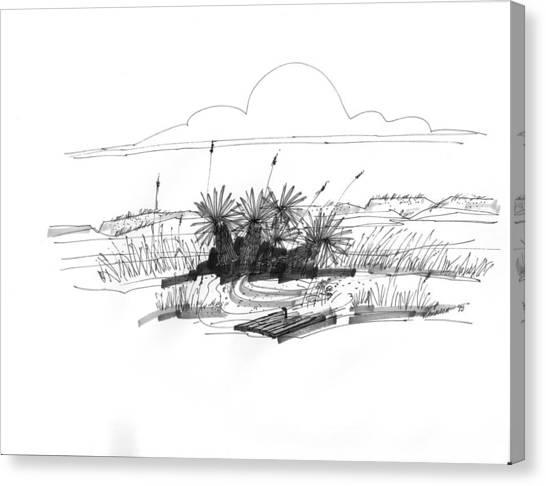 Drift Wood And Yucca Plants Canvas Print