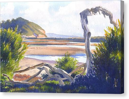 Mars Canvas Print - Driftwood At Torrey Pines by Mary Helmreich