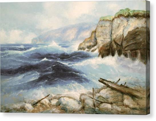 Driftwood Cliffs Canvas Print