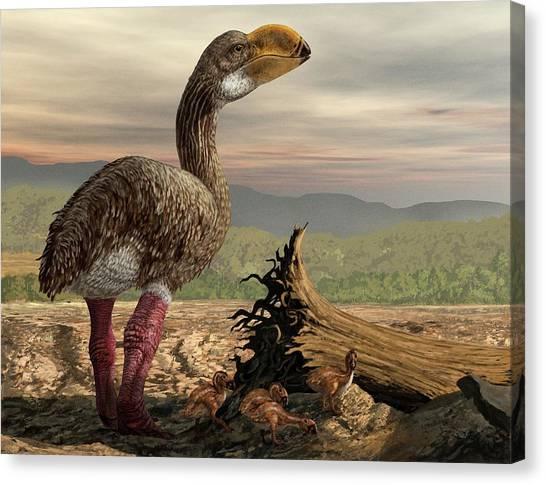 Emus Canvas Print - Dromornis With Chicks by Jaime Chirinos/science Photo Library