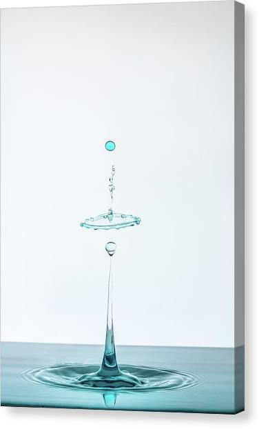 Drops Canvas Print - Drop by Adamo Prieto