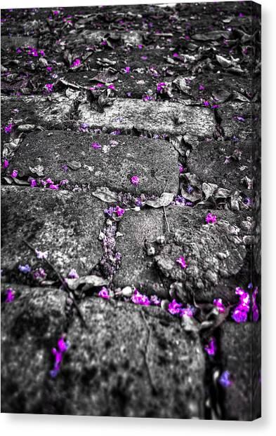 Drops Of Color Canvas Print