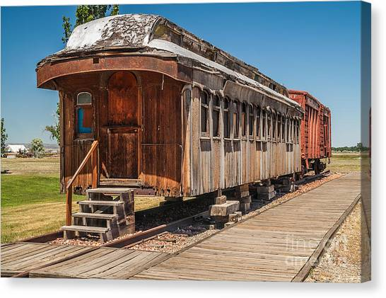 Drover And Cattle Cars Canvas Print