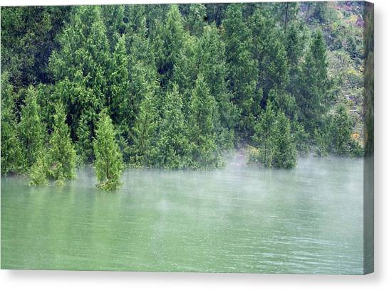 Drown Canvas Print - Drowned Trees by Adam Hart-davis/science Photo Library
