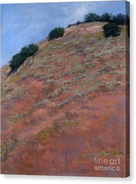 Drum Canyon - Late Spring-  1 Canvas Print