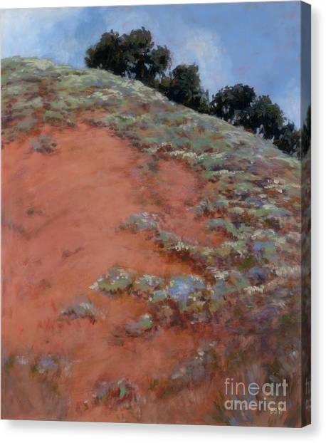 Drum Canyon - Late Spring-  2 Canvas Print