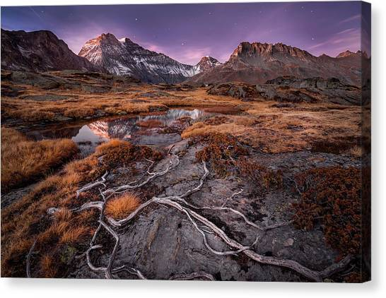 Alps Canvas Print - Dry Autumn by ?lvaro P?rez &