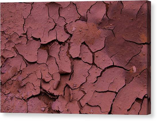 Clay Canvas Print - Dry Cracked Earth by Garry Gay