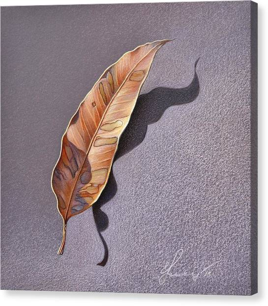 Dry Leaf Canvas Print by Elena Kolotusha