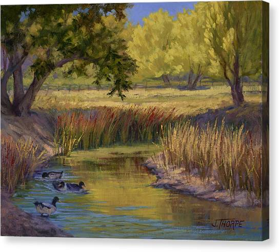 Duck Pond Canvas Print