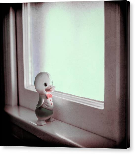 Duckie At The Window Canvas Print