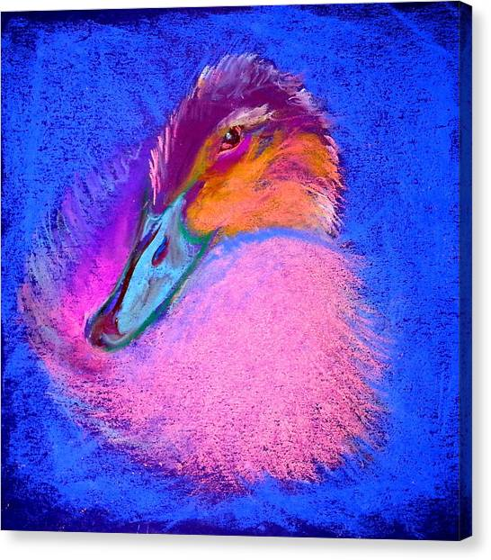 Duckling Pretty In Pink Canvas Print