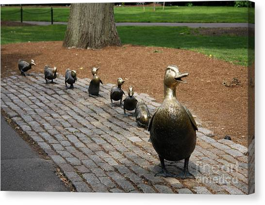Canvas Print - Ducklings by Christiane Schulze Art And Photography