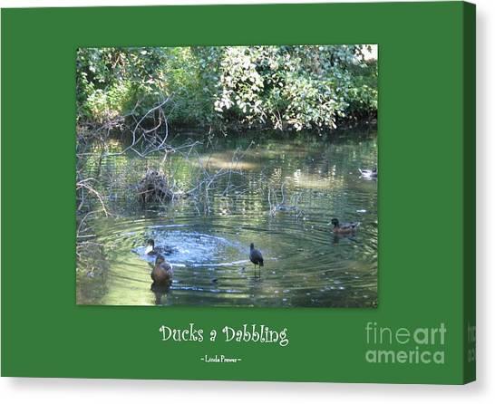 Ducks A Dabbling Canvas Print