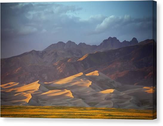 Dune Delight Canvas Print