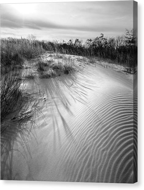 Dune Ripple Canvas Print by James Rasmusson